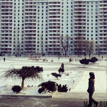 Армия Северной Кореи в Инстаграм